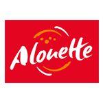 Alouette radio Tours partenaire média du Festival de Théâtre en Val de Luynes